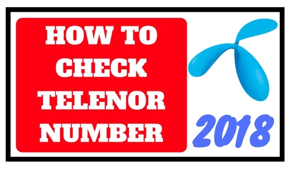 How to check telenor number without balance