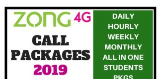 Zong Call Packages 2019