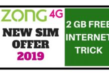 Zong New Sim Offer 2019