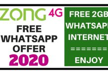 Zong Free WhatsApp Offer 2020