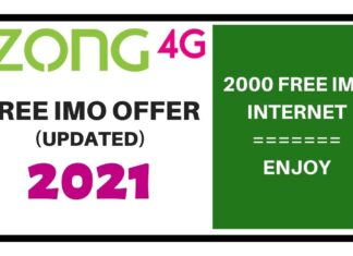 ZONG FREE IMO OFFER 2021